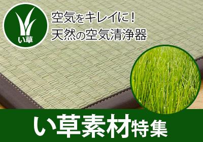 暑い夏にピッタリのい草カーペット