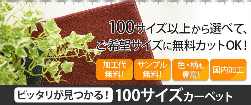 100サイズカーペット