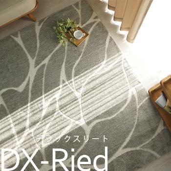 DX-リート