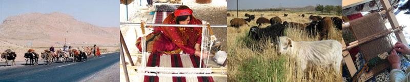 遊牧民がひとつひとつ丁寧に織り上げた絨毯がたくさん。熟練した織り子によって織られる絨毯は、100年以上、孫の代まで使える耐久性を持っています。きっと、一生物になる素敵な絨毯に巡り合えるはず。