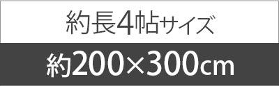 約200x300cm